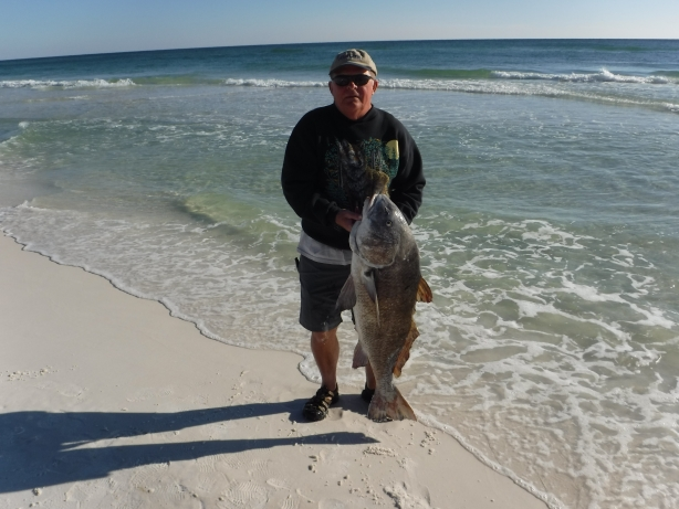 Sportfishing in the gulf of mexico for Destin florida fishing report